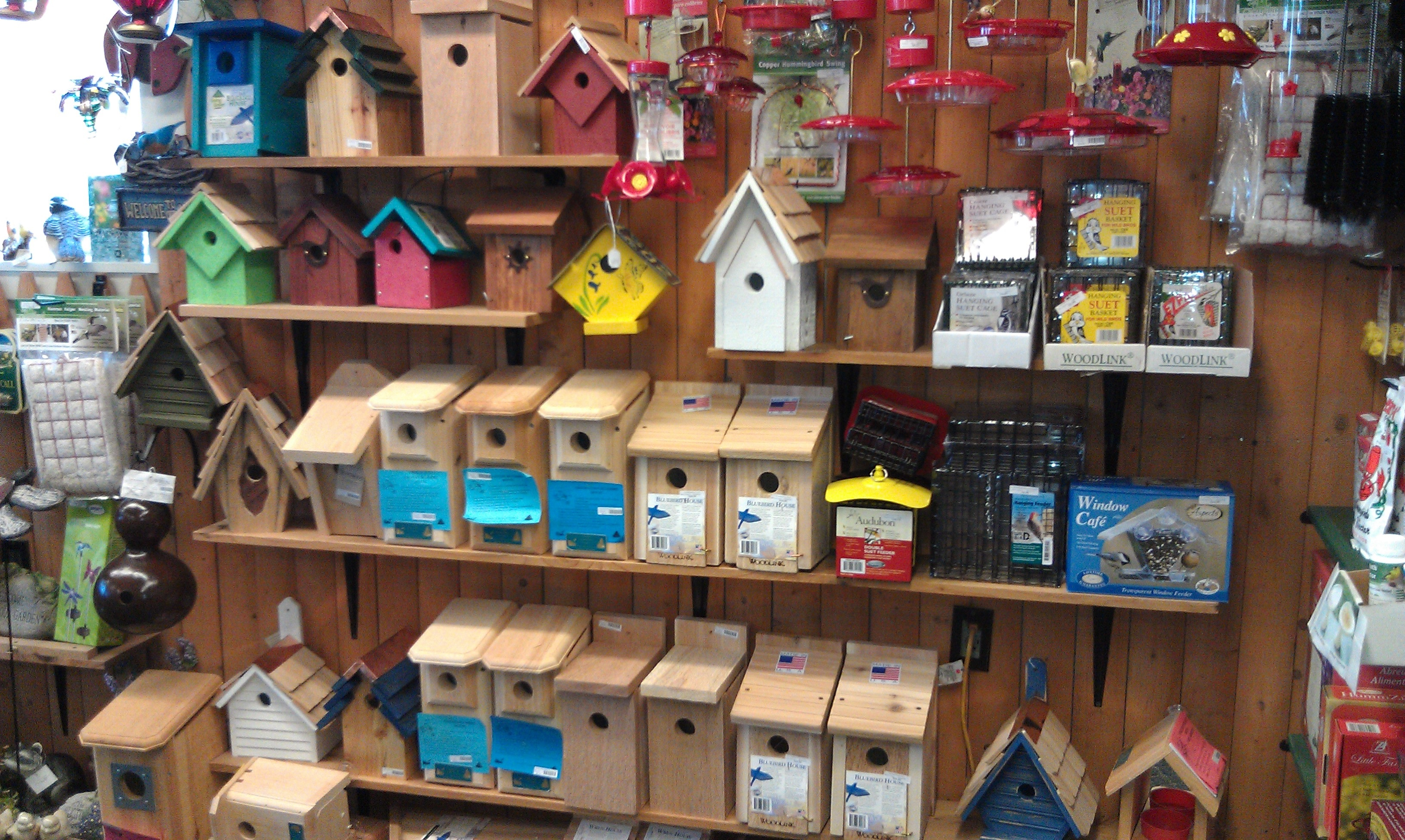 birds and beyond inc rh birdsandbeyondinc com birdhouse store in plymouth mi birdhouse store near me